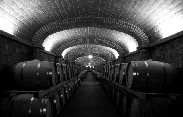 In the wineries of Italy there are 56 million hectoliters of wine (3.6% more than in 2020)