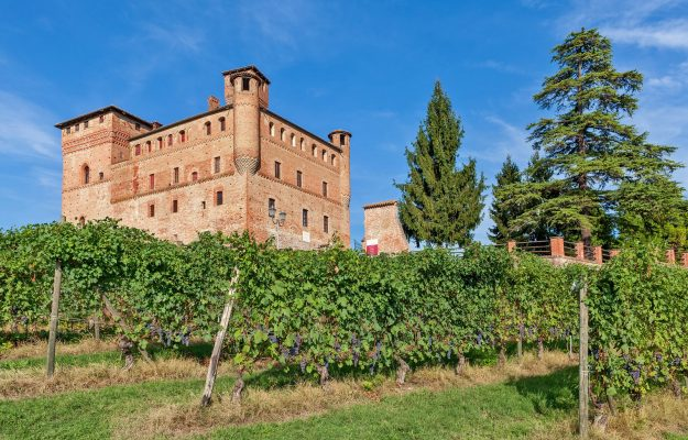 """""""Barolo en Primeur"""", a charity contest with 15 barriques, under the hammer of Christie's"""