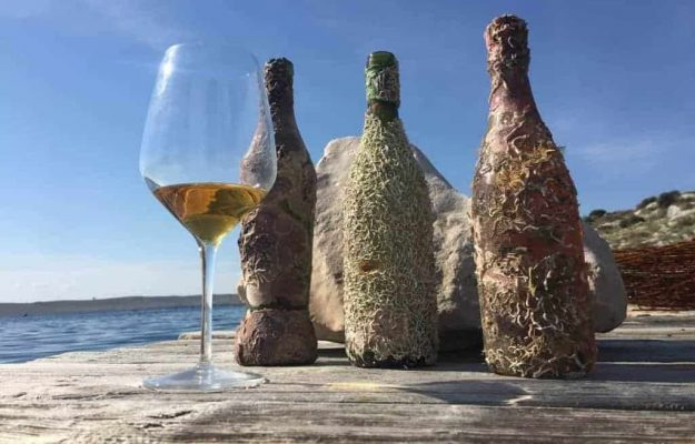 """More than a fashion, an oenological practice: even Terre di Talamo """"sinks"""" its wines"""