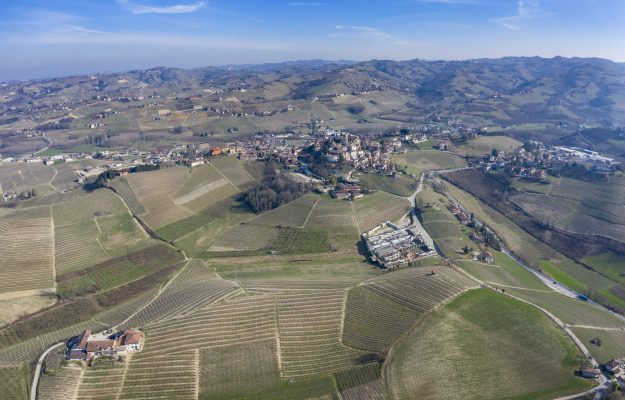 In the great wine territories we grow from meter to meter.  Like Ceretto, in Barbaresco