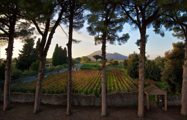 """Campania """"Semper Felix"""", among the new vintages of its wines, many starred chefs and Unesco beauties"""
