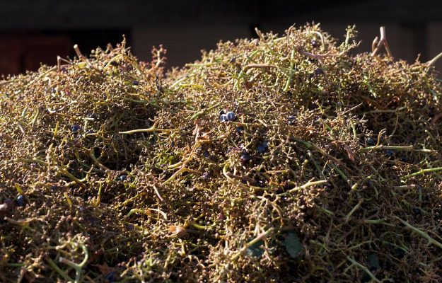 The grape stalks, from production waste to products for animal feed