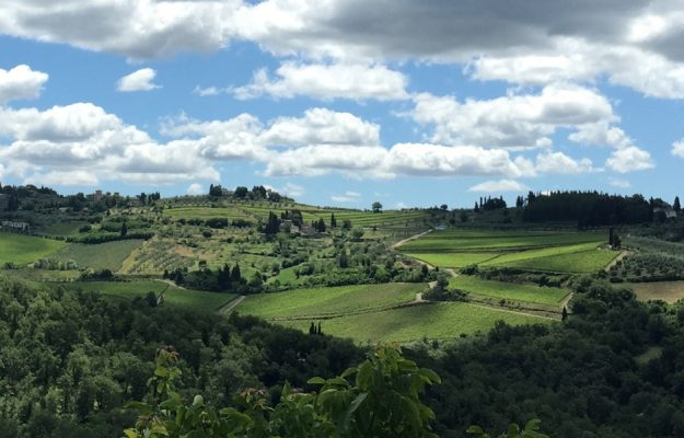 """Between Tuscany (Igt in the lead) and Piedmont (Langhe): the wines to invest in today according to """"Wine Lister"""""""